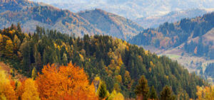 Header-Mountains-of-Fall-Foliage