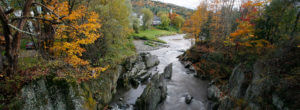 Header-stream-with-autumn-trees